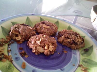 oatmeal cranberry dark chocolate almond cookies